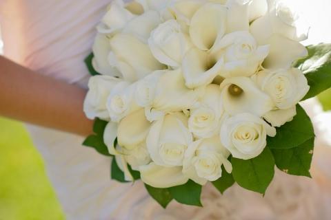 1619189292-bridal-357500_1920-PN86-480x320-MM-100