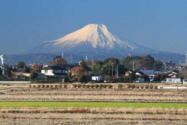 富士見市で工務店を探している方へ | 木づかいの家づくり お ...