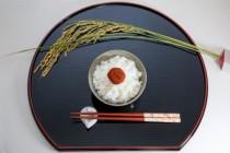 【コラム】 第1回 日本人と箸 ~和の精神を象徴する道具
